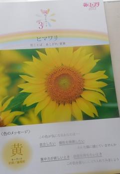 DSCN8480.jpg