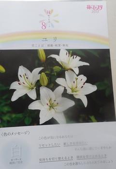 DSCN8485.jpg